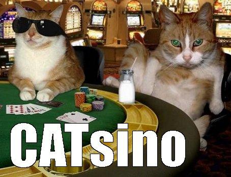 Catsino